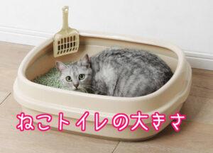 猫トイレ2大きさ
