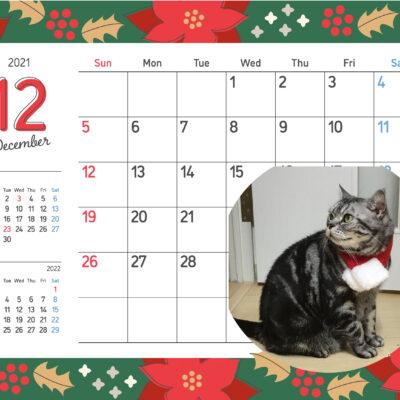 12月カレンダーとアレン
